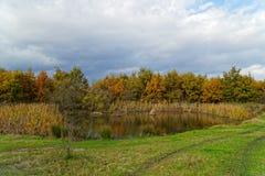 Reflexión del otoño imagenes de archivo