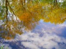 Reflexión del otoño de los árboles verdes y amarillos y del cielo azul en el agua del lago fotografía de archivo