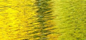 Reflexión del otoño en el agua la charca Imágenes de archivo libres de regalías