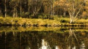 Reflexión del otoño en el río Fotos de archivo libres de regalías
