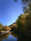 Reflexión del otoño en el río de la sal fotografía de archivo libre de regalías