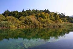 Reflexión del parque nacional/del lago de Plitvice Foto de archivo