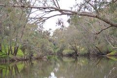 Reflexión del río Fotografía de archivo libre de regalías