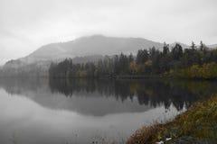 Reflexión del río Foto de archivo