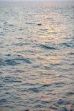 Reflexión del sol en superficie del mar Imágenes de archivo libres de regalías