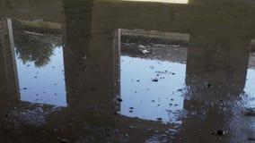 Reflexión en agua de un baile gótico de la mujer joven cerca de una ventana del edificio arruinado metrajes