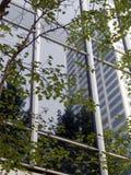Reflexión en el edificio del asunto Imagen de archivo libre de regalías