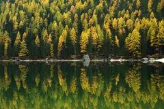 Reflexión en Lago di Braies, dolomías, Italia Imágenes de archivo libres de regalías