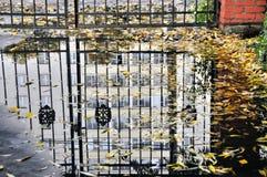 Reflexión en un charco del otoño Fotografía de archivo libre de regalías