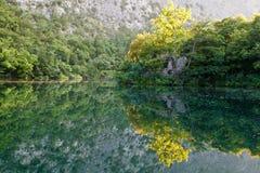 Reflexión hermosa en el río cerca partido Foto de archivo libre de regalías