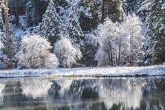 Reflexión II del invierno Imagen de archivo