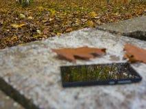 Reflexión móvil Fotografía de archivo