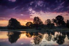 Reflexión pura de los árboles en el lago Fotos de archivo