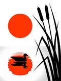 Reflexión roja del sol en el lago arundineo Imagen de archivo