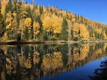 Reflexión simétrica perfecta de las hojas de otoño en el río de Xinjiang imagenes de archivo