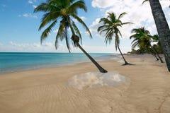 Reflexión tropical el Caribe del agua de la playa Imagen de archivo
