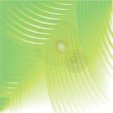 Reflexión verde de la hoja Imágenes de archivo libres de regalías
