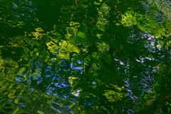 Reflexión verde del agua de la naturaleza imagenes de archivo
