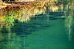 Reflexión verde del amarillo del lago gold del musgo Imagen de archivo libre de regalías