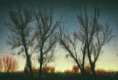 reflexión de los árboles Fotos de archivo