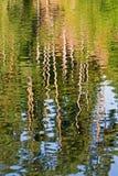 reflexion Arkivbild