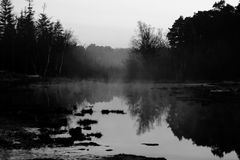 Reflexion Arkivfoton