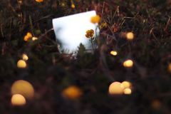 reflexion Stockfotografie