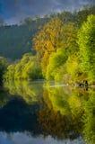 Reflexion auf dem Fluss Porträt lizenzfreies stockbild