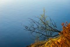 Reflexion auf dem Wasser Lizenzfreie Stockfotos