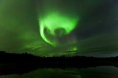 Reflexion av Aurora Borealis över det Olnes dammet i Fairbanks, Alaska Arkivbild