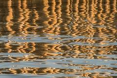 Reflexion av bambu på ett vatten abstrakt bakgrund Royaltyfri Bild
