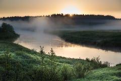 Reflexion av de första strålarna av solen i en dimmig skogflod Arkivbild