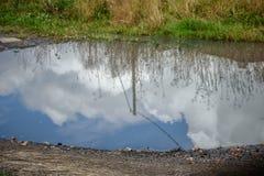 Reflexion av den blåa himlen i en regnpöl Arkivbild
