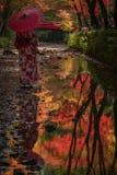 Reflexion av geishaen och färgrika träd arkivbilder