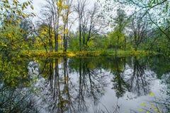 Reflexion av hösten i vattnet av skogsjön royaltyfria foton