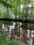 Reflexion av hus och tr?d p? floden i Petersburg arkivbilder