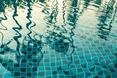 Reflexion av palmträd i pölvattnet Natur Fotografering för Bildbyråer