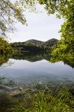 Reflexion av skogen över vattnet för sjö` s på Plitvicka sjön fotografering för bildbyråer