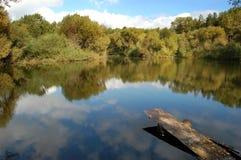 Reflexion av skogen Royaltyfri Foto