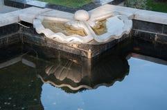 Reflexion av skulpturskalet med en pärla i vattnet Royaltyfri Fotografi
