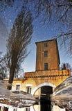 Reflexion av torrt trä och det gamla tornet i en pöl på trottoaren som en stjärnklar himmel in fotografering för bildbyråer