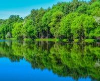 Reflexion av träd i vattensjön royaltyfria foton