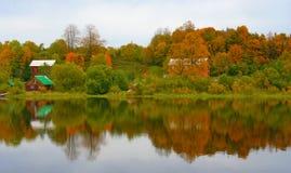 Reflexion av trees i floden Arkivbild