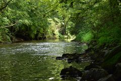 Beautiful riverside. Reflexion in beautiful riverside Royalty Free Stock Image