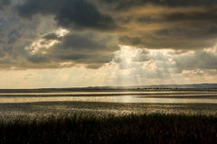 Reflexion bei Sonnenuntergang auf der Lagune lizenzfreie stockfotos