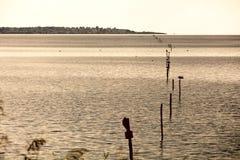 Reflexion bei Sonnenuntergang auf der Lagune lizenzfreie stockfotografie