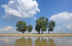 Reflexion of clouds and trees Royalty Free Stock Photos