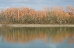 Reflexion der Bäume im Fluss Stockfotos