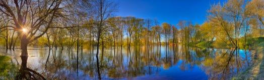 Reflexion der Bäume im Fluss an der Dämmerung Stockbild