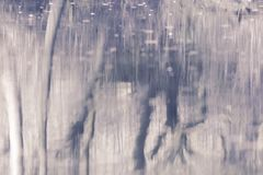 Reflexion der B?ume im Wasser Abstrakter Vektor der Natur stockfoto